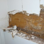 Sill plate with termite tubes and damage.